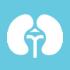 urologo a roma est presso studio medico di centocelle