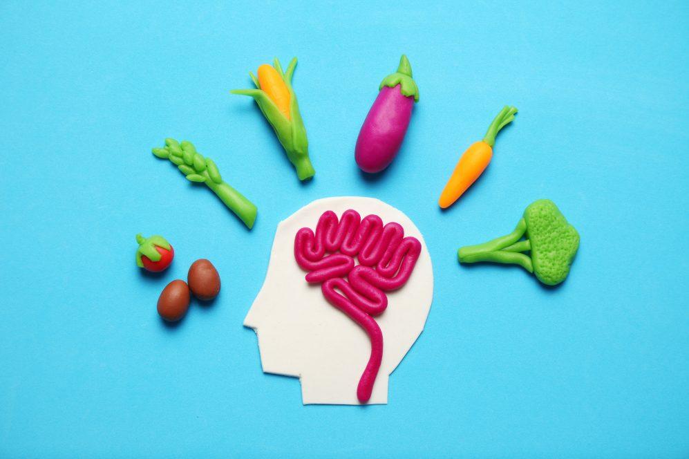 e-normale-avere-fame-durante-dieta 1 - la dieta fa aumentare la fame
